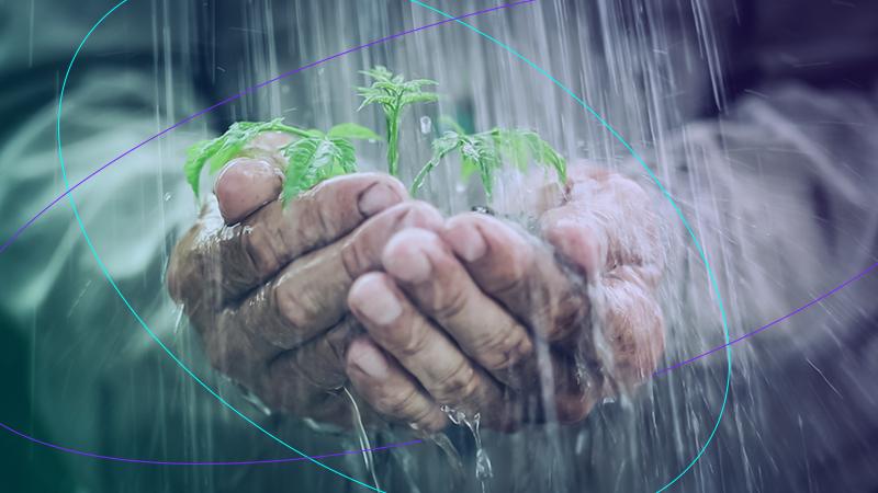 @Sigfox: 8 consejos para la conservación del agua agrícola