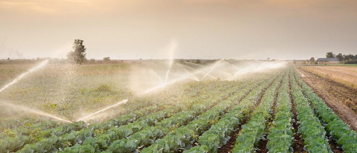 Sistema automatizado de riego, agricultura inteligente con tableros Nucleo y @Sigfox