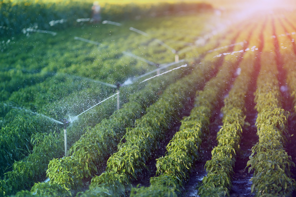 Para nuestras futuras generaciones, la agricultura estará conectada y será ecológica según @Sigfox y Sencrop