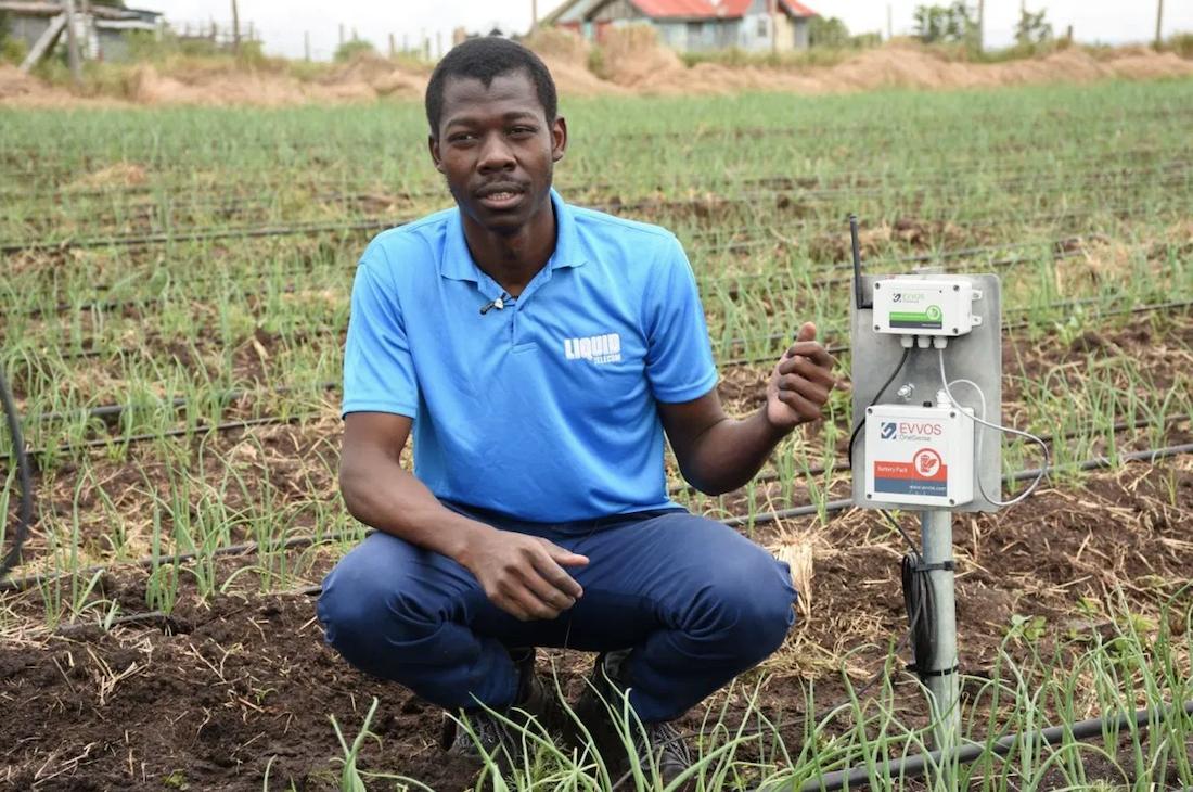 Liquid Telecom y Twiga Food introducen una agricultura de precisión en Kenia