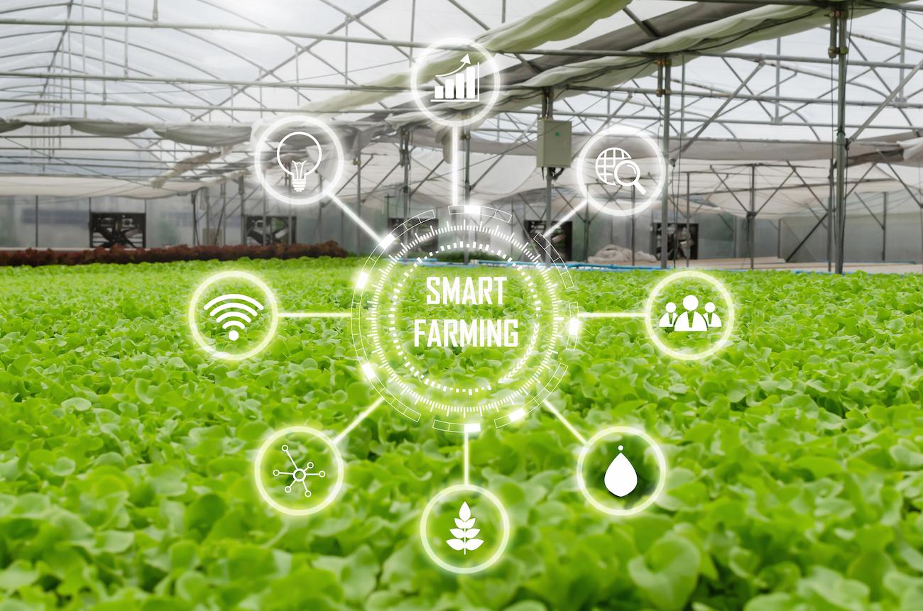 La red 0G de Sigfox ayuda a Sencrop a ofrecer soluciones agrícolas inteligentes y conectadas