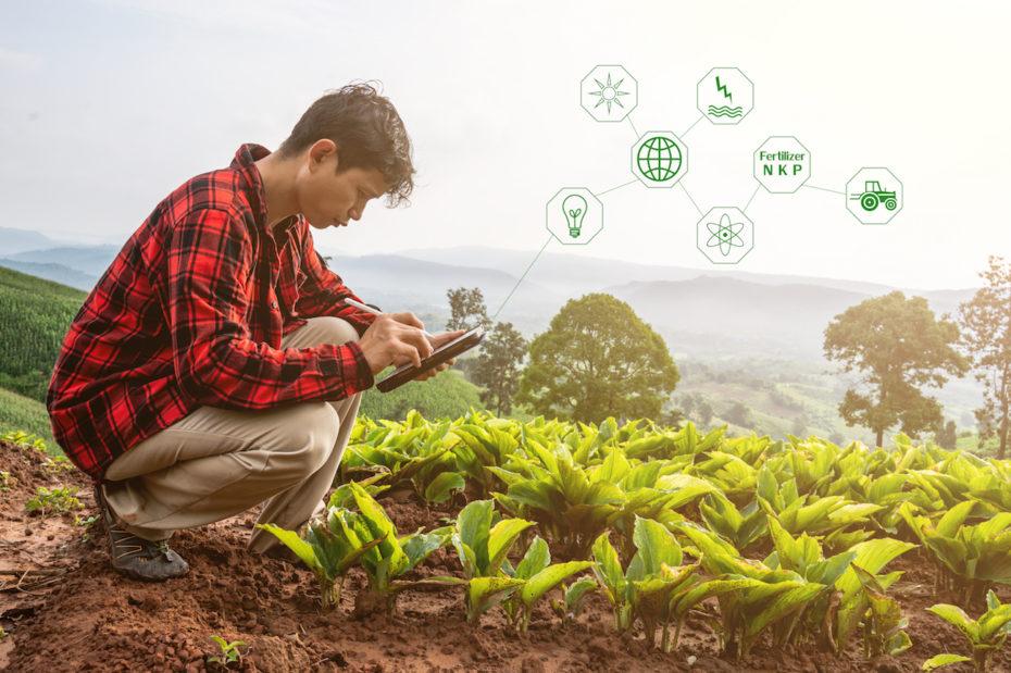 Estaciones meteorológicas conectadas con agricultura inteligente