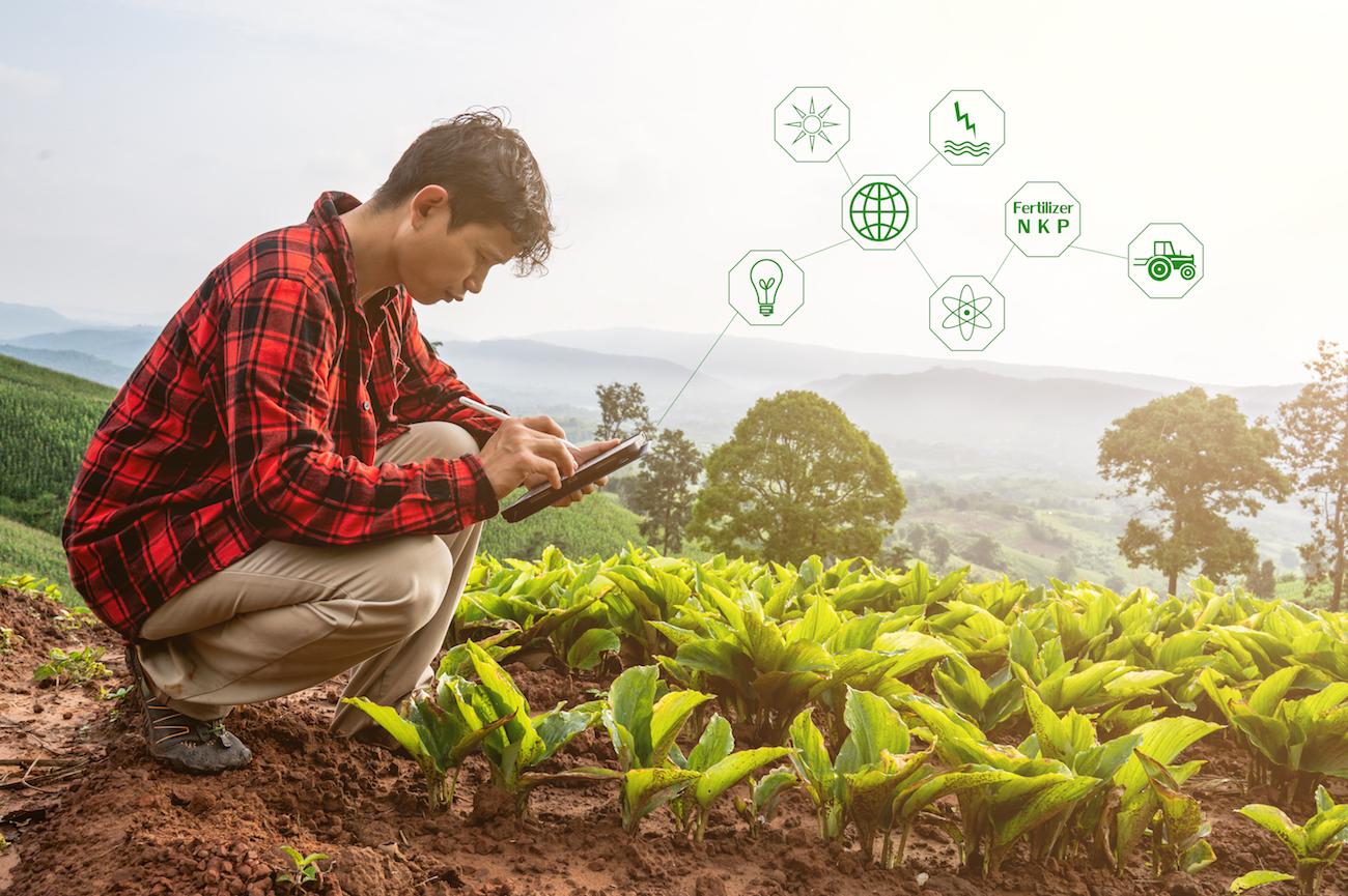 Sencrop inventa el Waze de los agricultores: una plataforma que proporciona estaciones meteorológicas conectadas