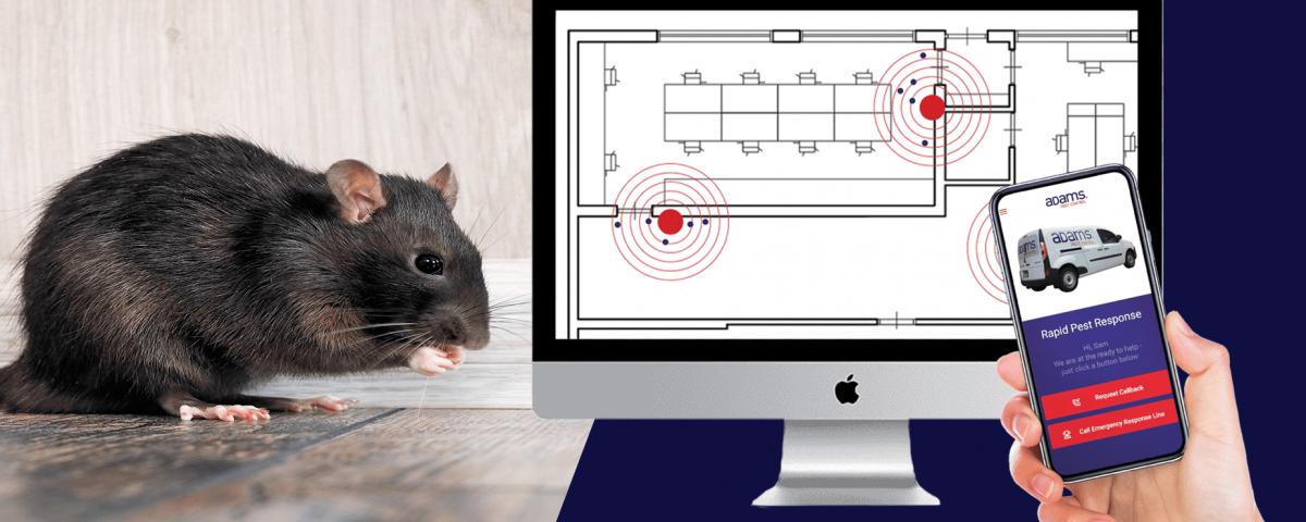Adams Pest Control, Cre8tec y Thinxtra crean el futuro del control de plagas con una solución digital de gestión de roedores 24×7 habilitada para IoT